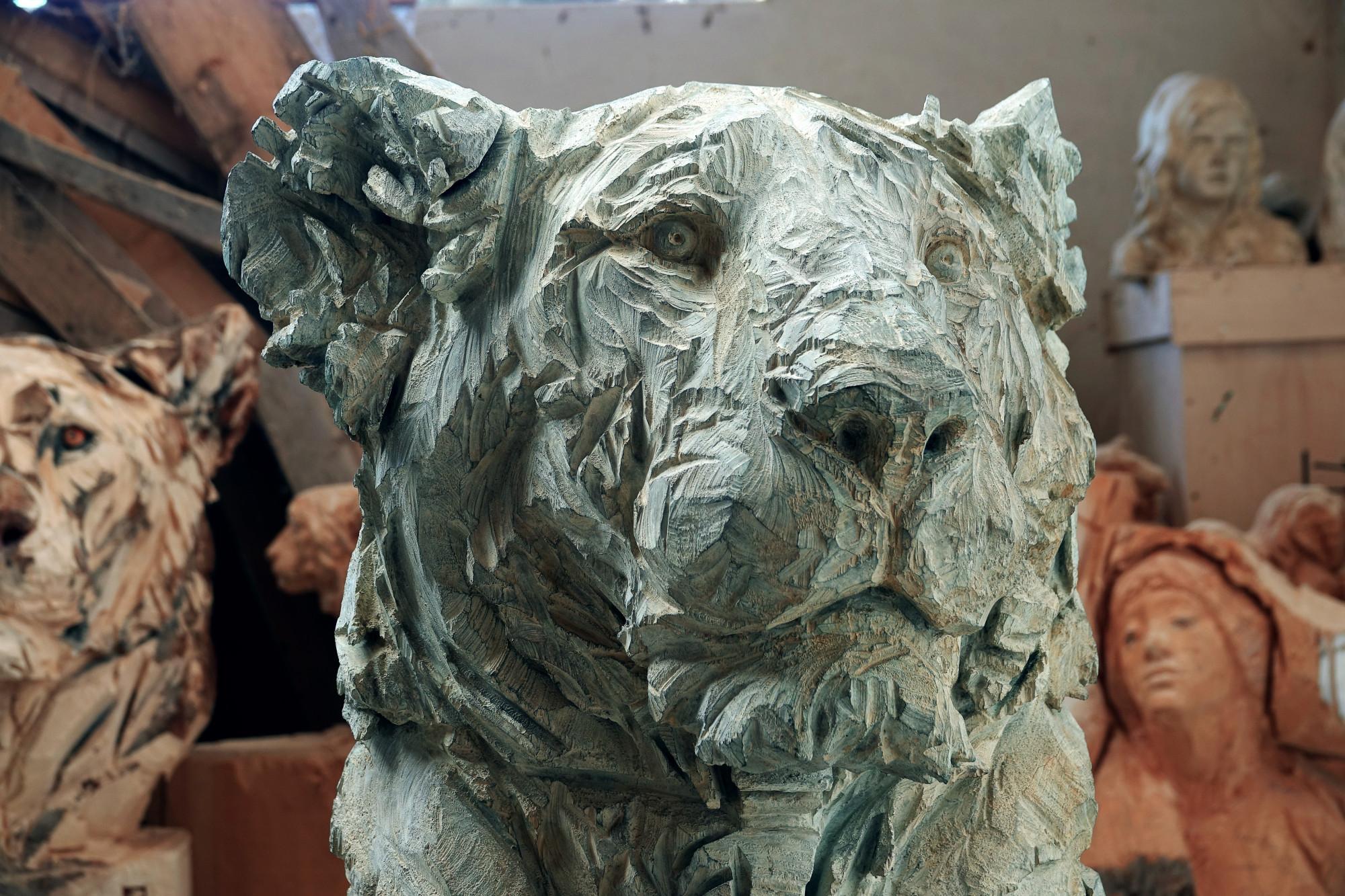 Untitled - Lion 2 (3)