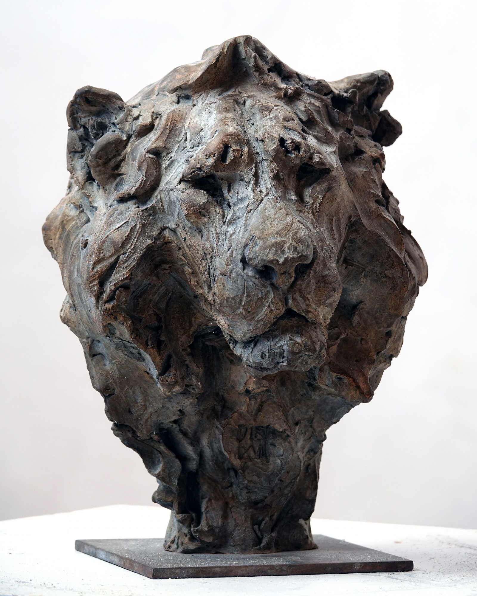 Bust of Lion