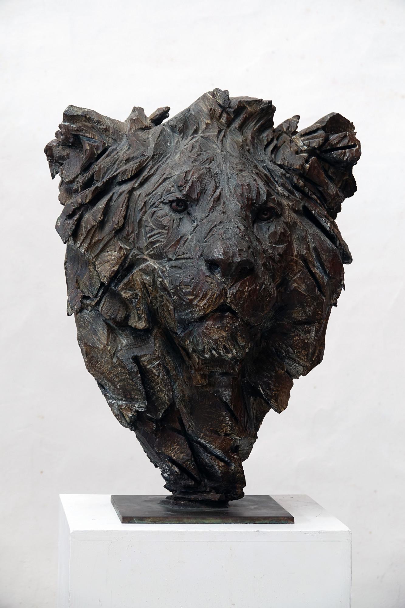 Untitled - Lion 1