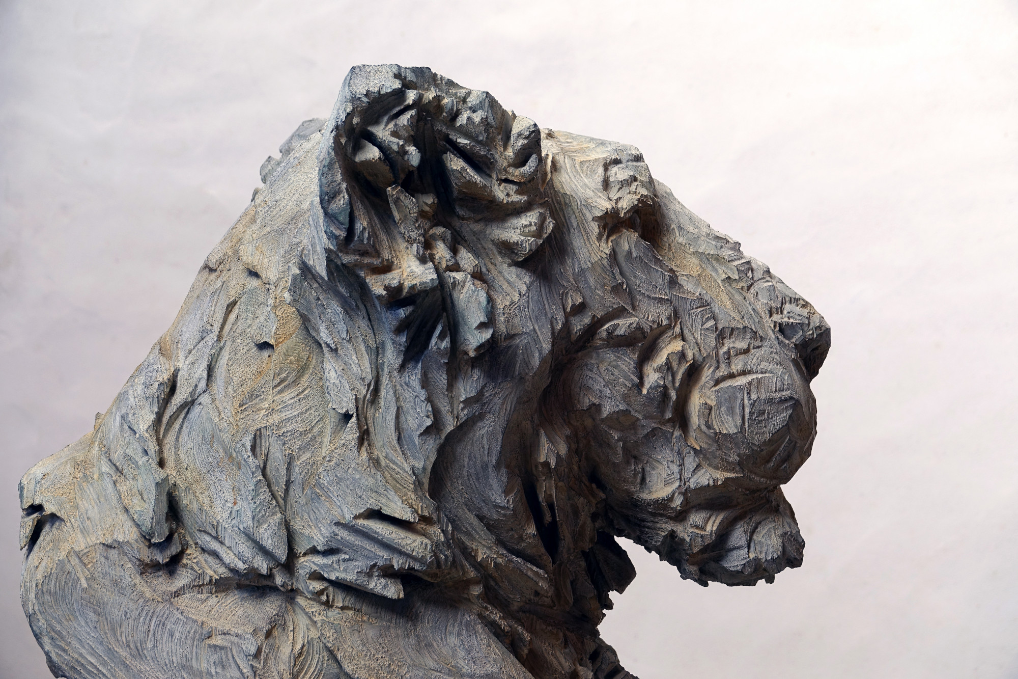 Untitled - Lion 2 (2)